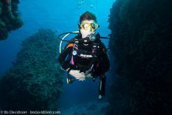 BD-120421-St-Johns-5945-Homo-sapiens.-Linnaeus.-1758-[Diver].jpg